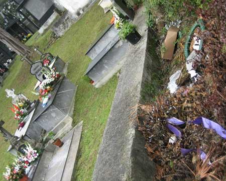 d�a de todos los santos, flores van, basura va